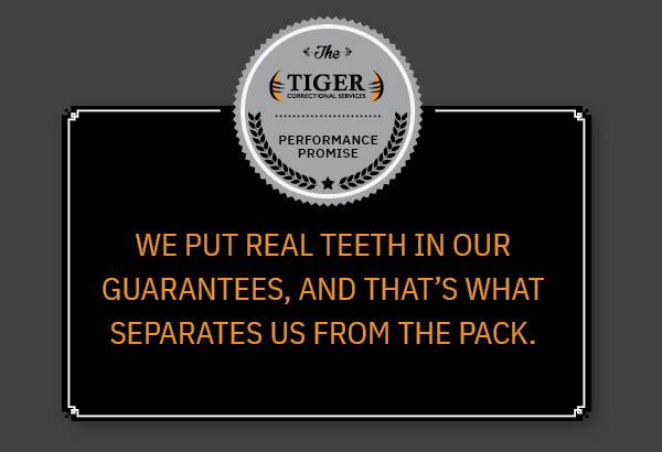 Tiger – Tiger Description